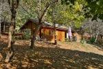 Les Chalets de la Gazonne-Location de vacances